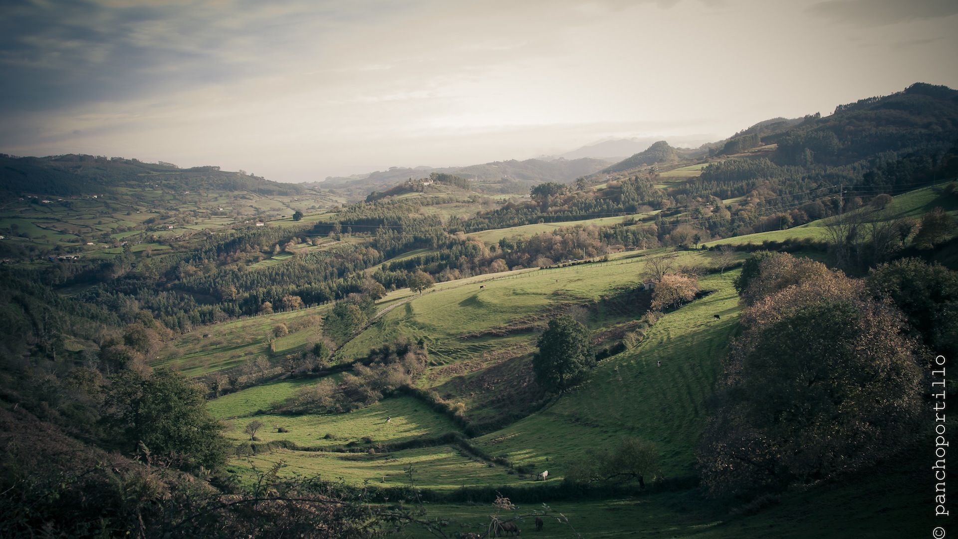 Asturias-14-DSC_3419
