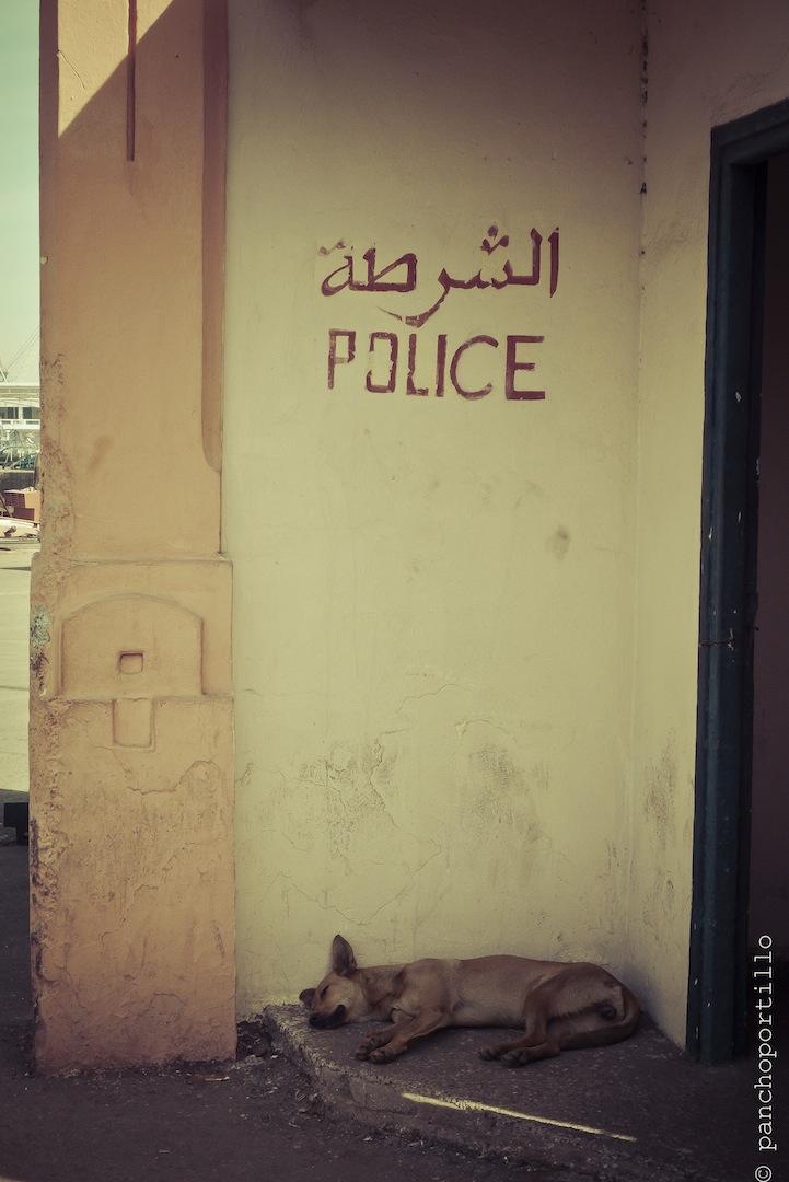 Casablanca-04-L1050311