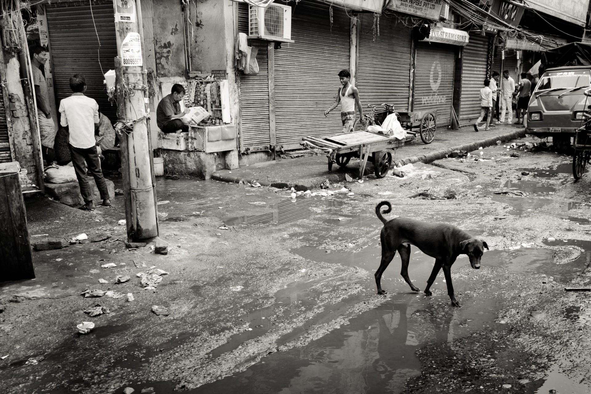 10-Delhi-07-11