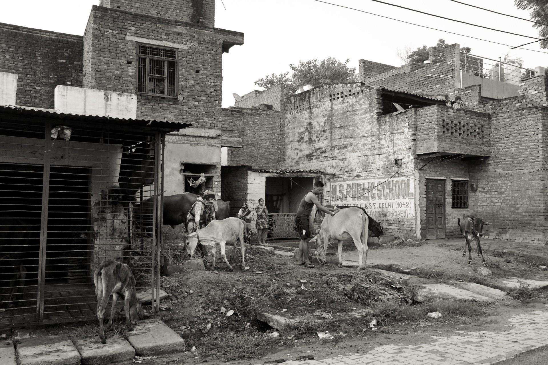 20-Delhi-12-26