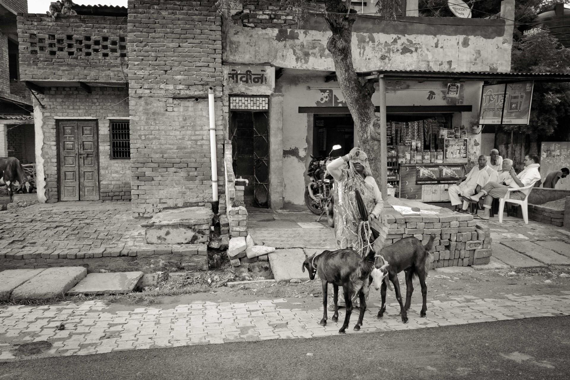 20-Delhi-13-25