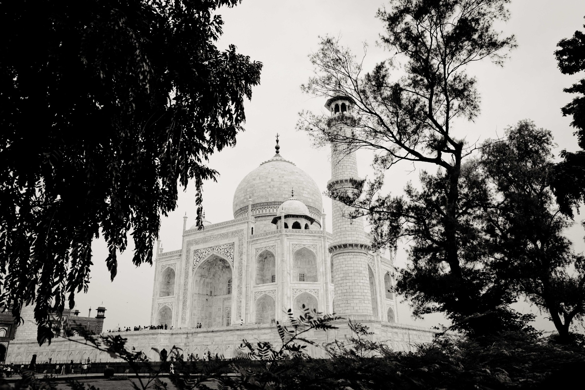 20-Delhi-19-19