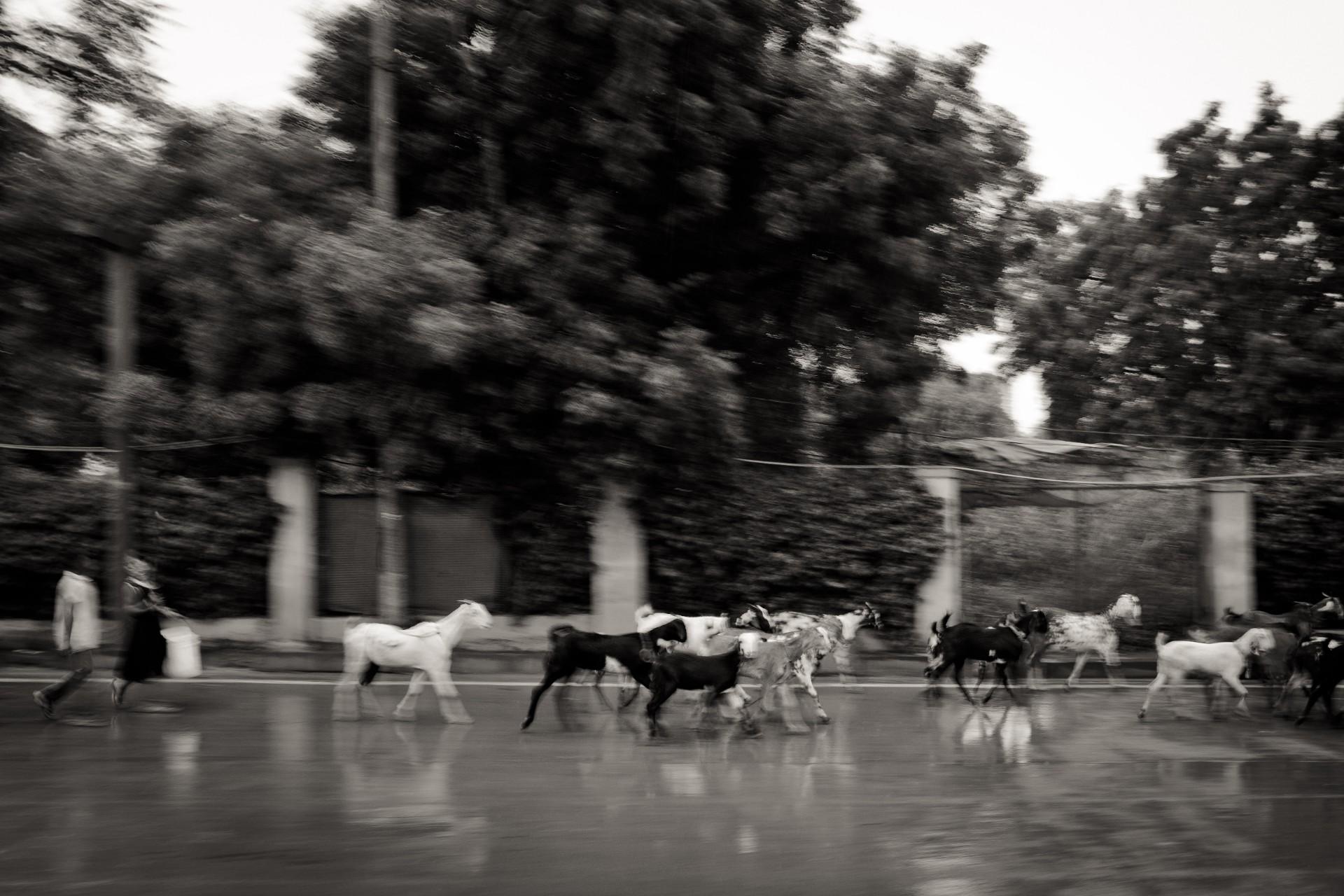 20-Delhi-31-07