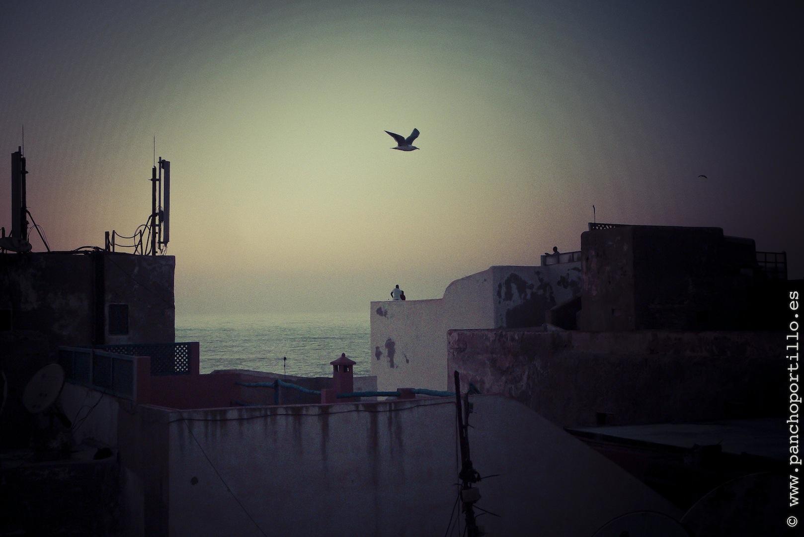 Essaouira-01-L1080180-2