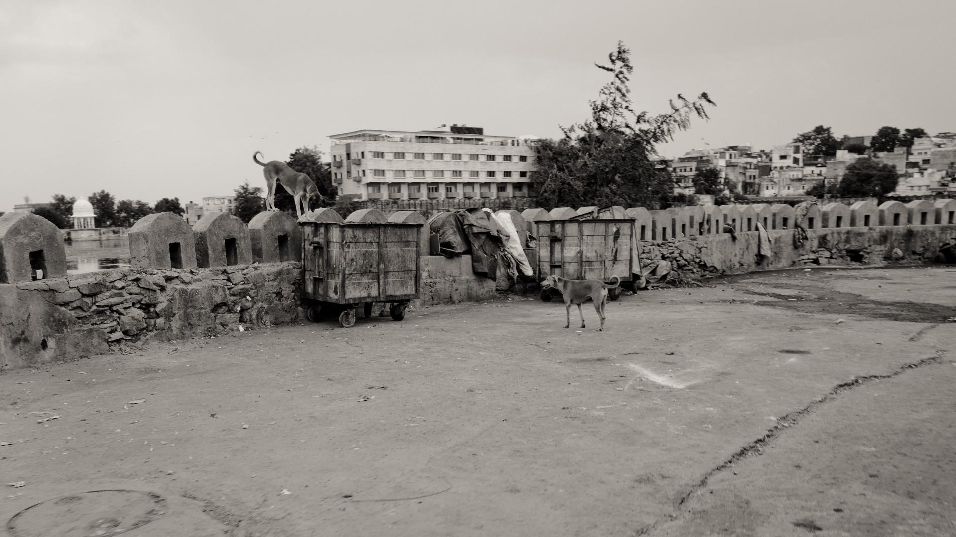 Delhi-15-63