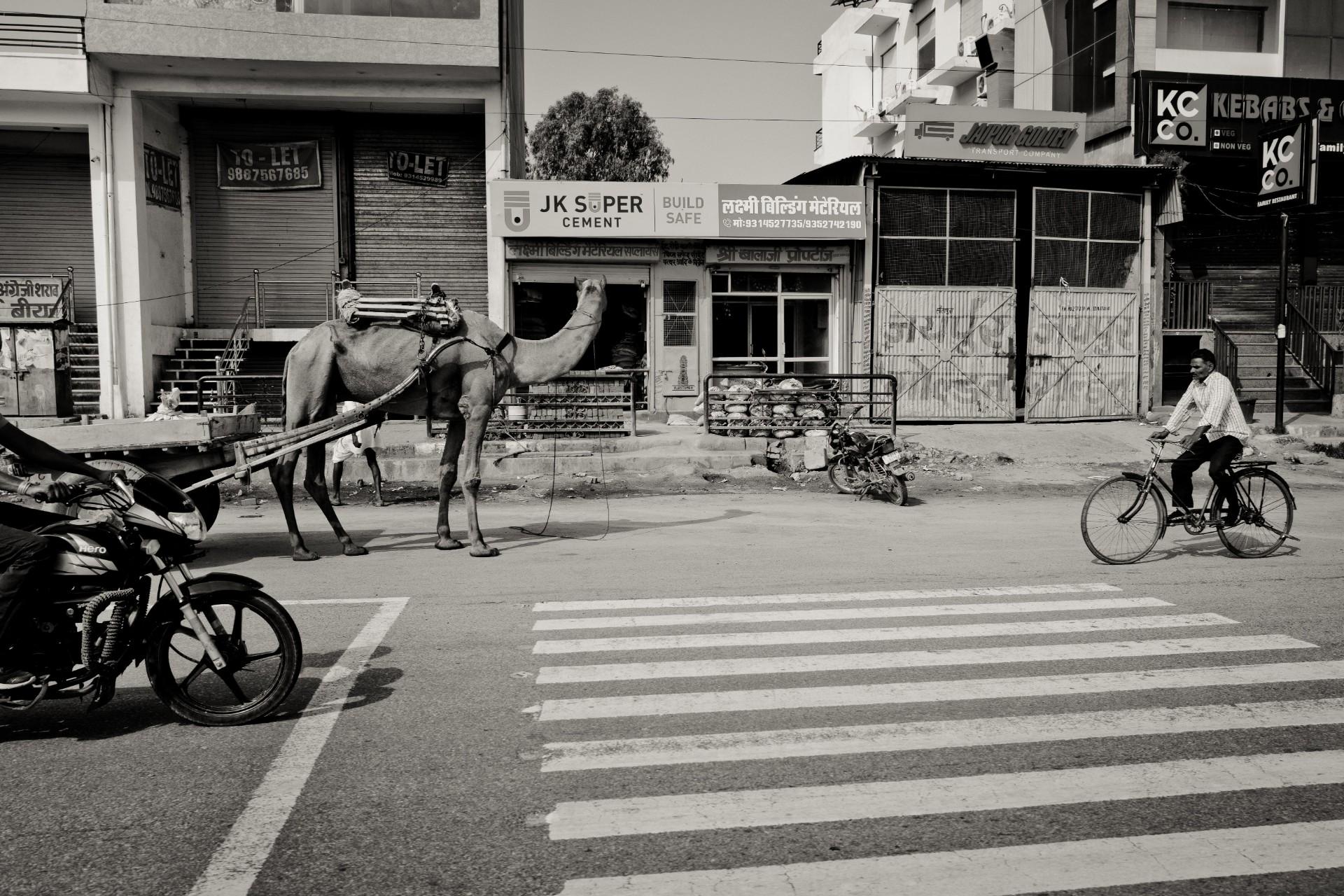 Delhi-72-06