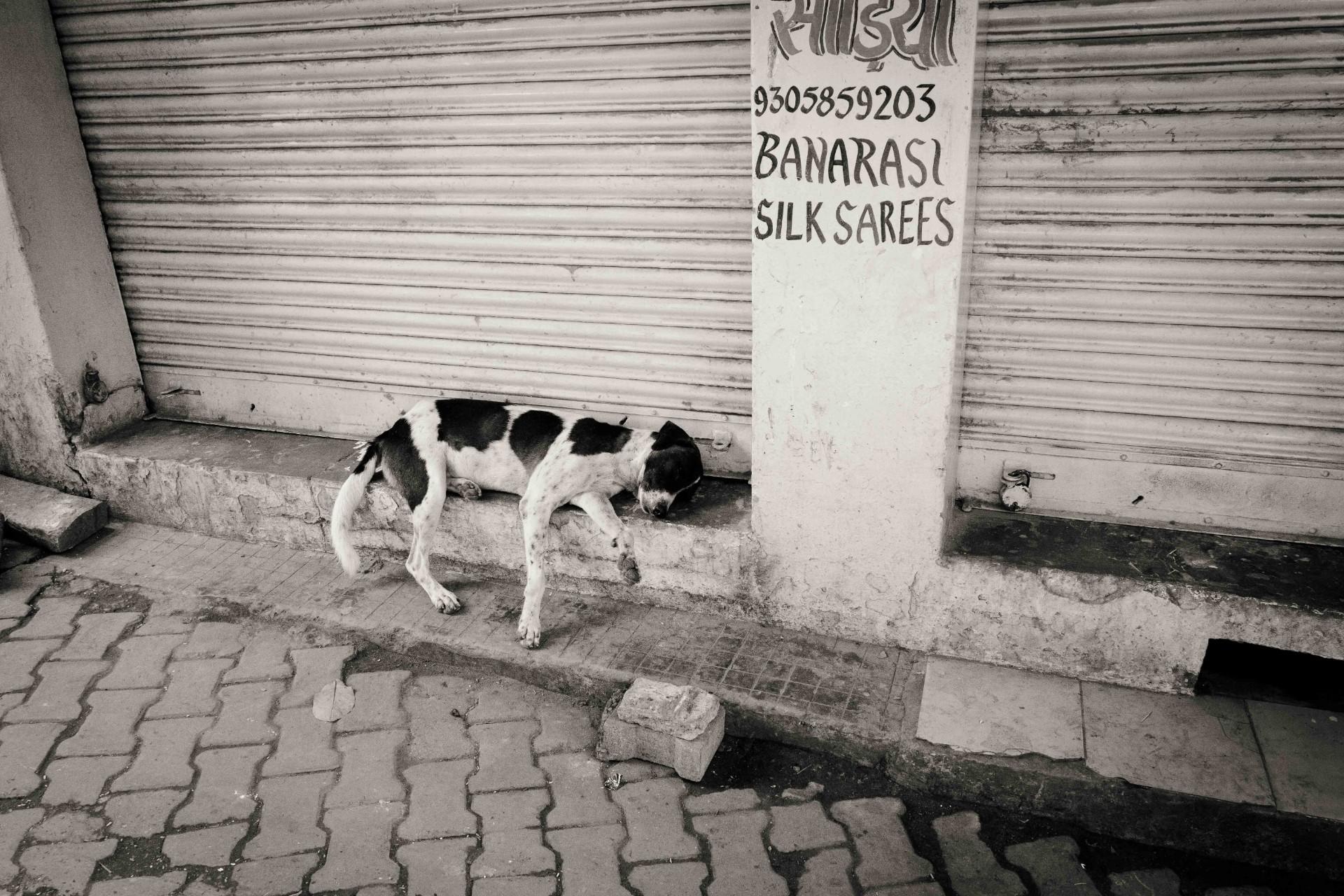 Varanasi-web-33-opt-17